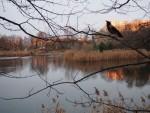 WARSZAWSKIE PARKI - Park Szczęśliwicki