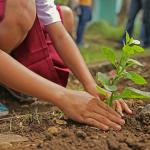 Ratujmy naszą planetę! Eko wycieczka szkolna.