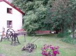 Puszcza Kampinoska - jesień w lesie, w polu i na łące