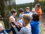 Jesienne imprezy integracyjne dla dzieci i młodzieży na 1,2,3,4 i 5 dni