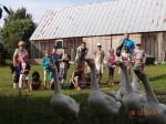 lesniczowka-paryz-jesienne-prace-2013-05