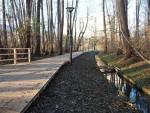 WARSZAWSKIE PARKI - Park Olszyna