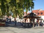 Bałtów + Sandomierz - 2 dni - NOWOŚĆ